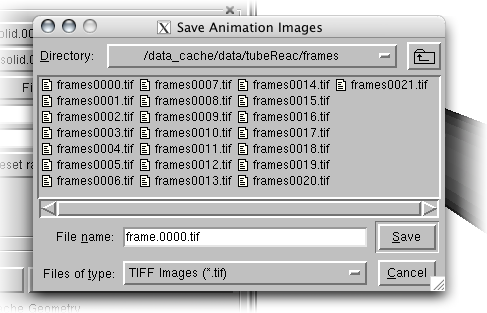 Paraview Save Animation Frames